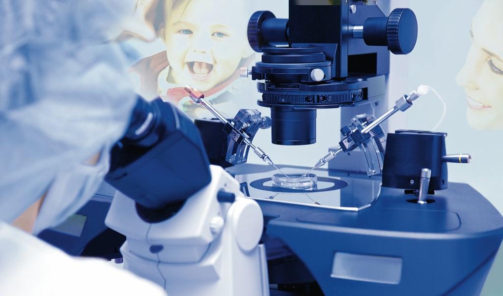In vitro - fot. Fotolia