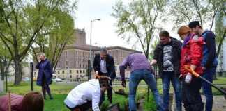 Ogród społecznościowy - fot. UM Dąbrowa Górnicza/Dariusz Nowak (nddg)