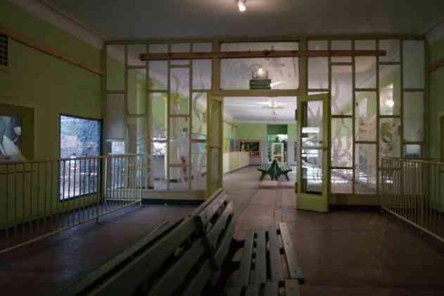 Egzotarium w Sosnowcu - fot. MC