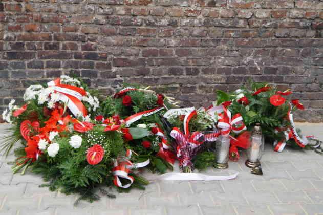 Kwiaty przy kamienicy przy ul. Ostrogórskiej w Sosnowcu- fot. MC