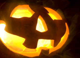 Halloween – fot. Stock
