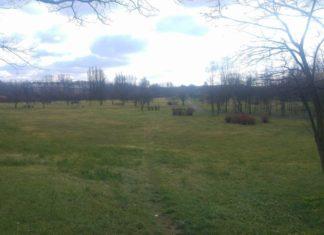 Park Alfred w Czeladzi - fot. Łukasz Zub