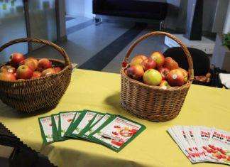 """Akcja """"Jabłko zamiast papierosa"""" w Sosnowcu – fot. MC"""