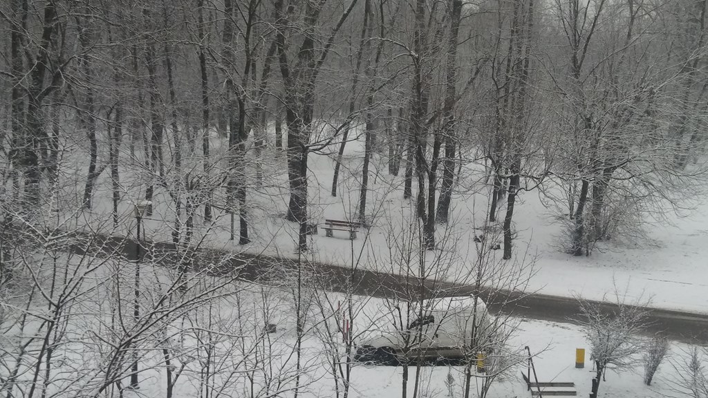 Zima w Sosnowcu - fot. Arch. TZ
