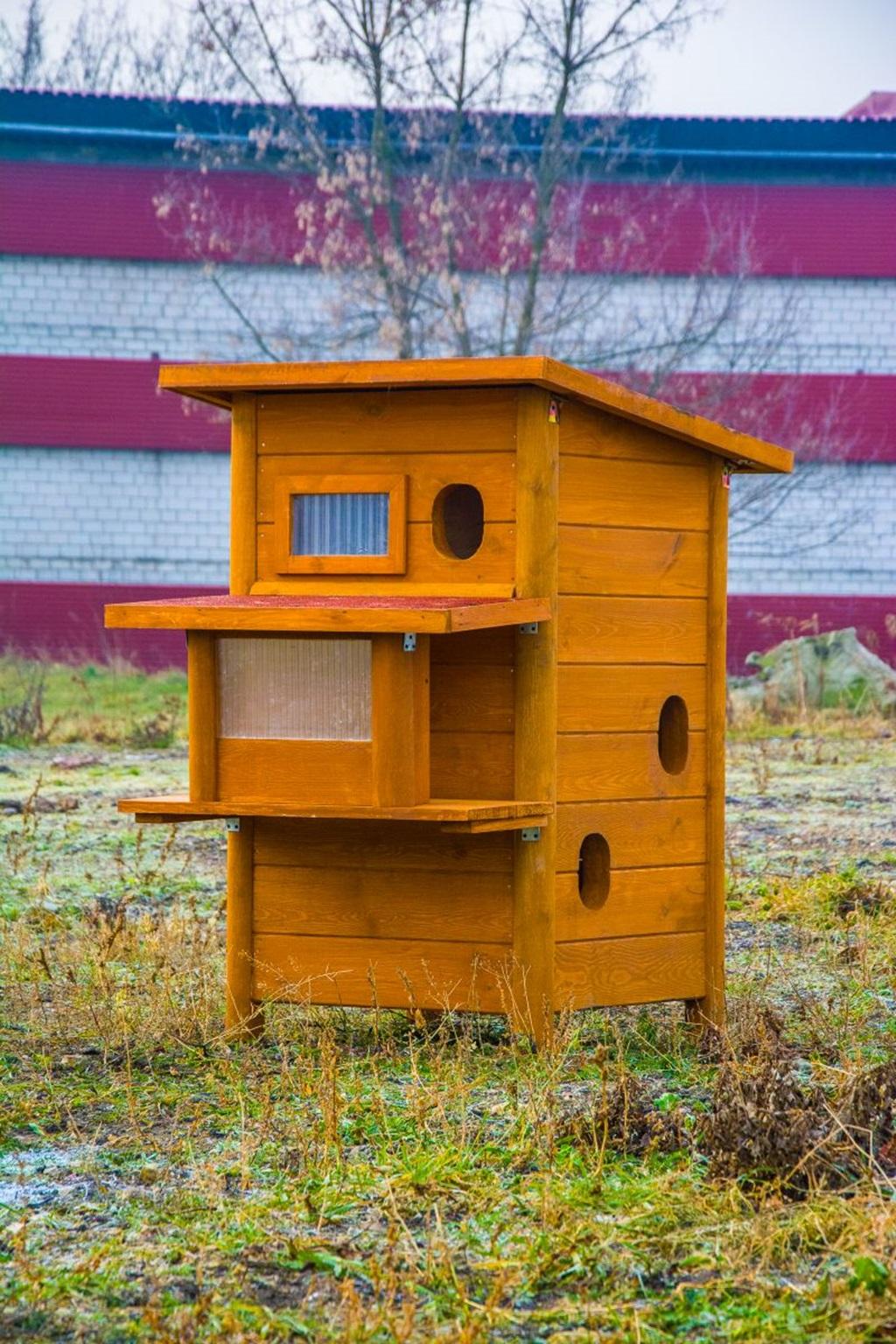 Domy dla kotów wolno żyjących Będzin - fot. UM Będzin
