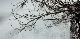 Burza śnieżna - fot. Pixabay