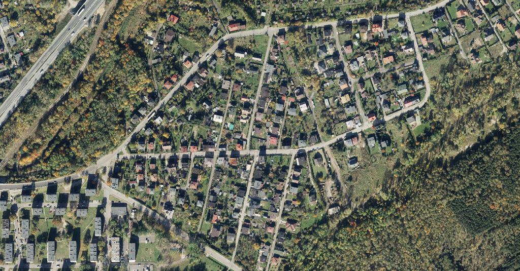 Bór, Sosnowiec - fot. UM Sosnowiec