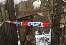 Martwe zwierzęta w Sosnowcu - fot.. OTOZZ Animals Gliwice