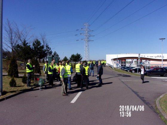 Wspólna akcja podopiecznych schroniska Caritas i C.H. Auchan na rzecz sosnowieckiego hospicjum - fot. Caritas