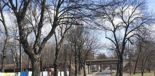 Remont wiaduktu przy ul. Lipowej - fot. MC