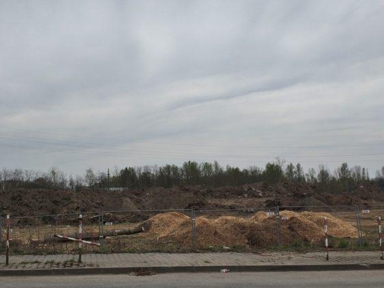 Trwa budowa Hillwood Zagłebie – fot. MC
