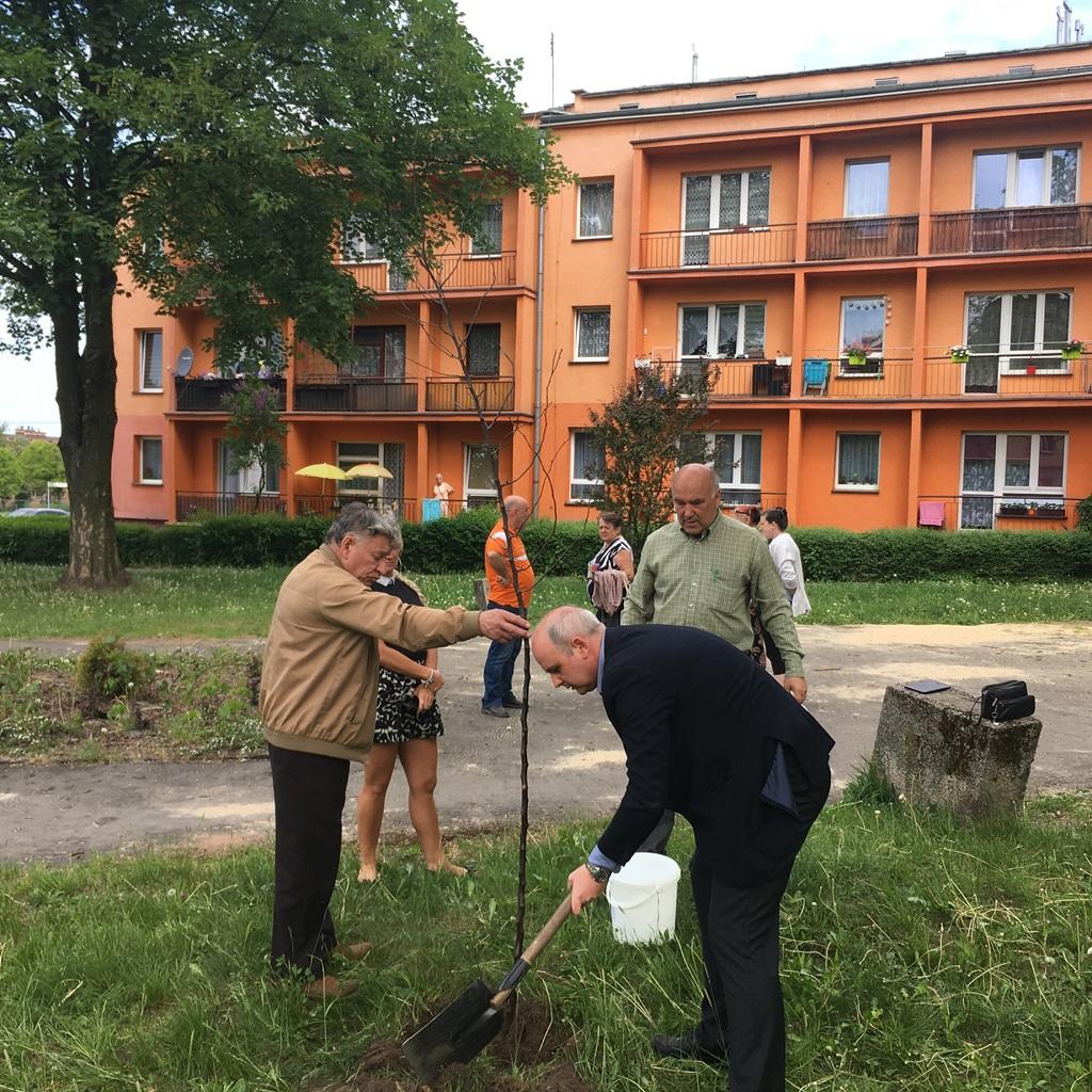 Akcja sadzenia drzew w Gołonogu - fot. mat.pras.