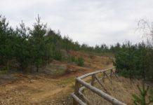 Tereny, na których powstanie arboretum - fot. UM Jaworzno