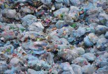 Czy śmieci są przyczyną smrodu w kilku dzielnicach regionu – fot. Pixabay