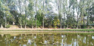 Park Grabek w Czeladzi - fot. UM Czeladź