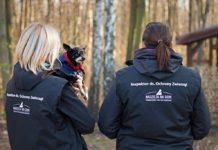Inspektor ds. ochrony zwierząt - fot. Nadzieja na dom