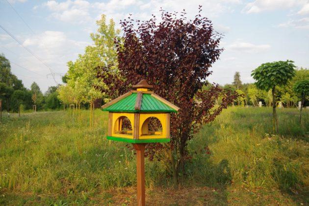 """""""Przyroda dla Sosnowca: ścieżka edukacyjno-przyrodnicza"""" - fot. arch. prywatne"""