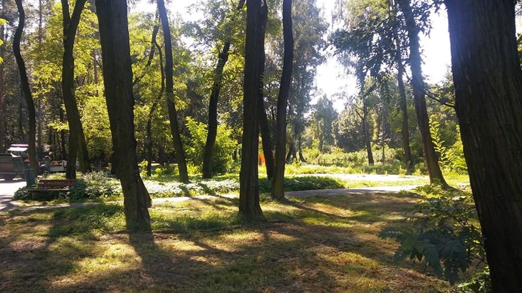 Park Podlesie - fot. UM Dąbrowa Górnicza