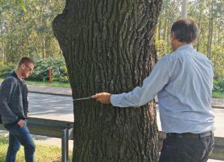 Urzędnicy kupili specjalny tomograf – fot. UM Dąbrowa Górnicza
