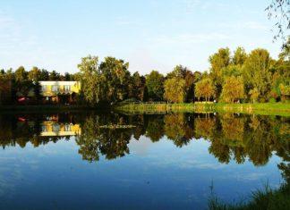 Park w Kazimierzu Górniczym - fot. Wikipedia