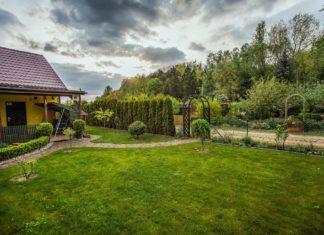Ogród, działka - fot. Pixabay