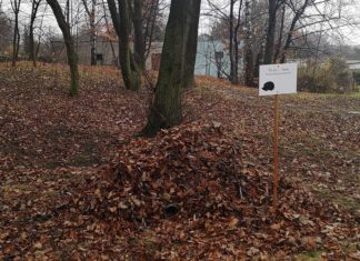 W parkach w Sosnowcu pojawiły się domki dla jeży – fot. Facebook/Arkadiuszach Chęciński