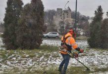 Kosili trawę przykrytą śniegiem - fot. Facebook @Wolny Grodziec