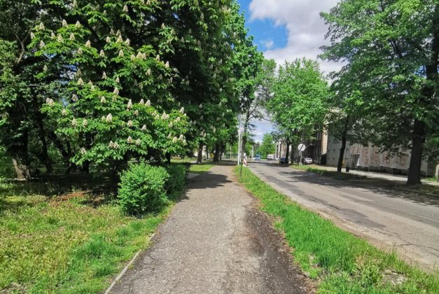 Dolina Brynicy wzdłuż ulicy Katowickiej w Czeladzi – fot. UM Czeladź