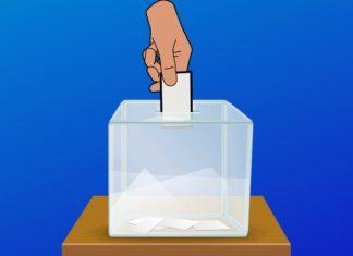 Wybory – fot. Arch. TZ