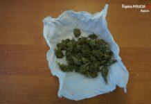 Narkotyki w mieszkaniu w centrum Będzina – fot. Policja Będzin