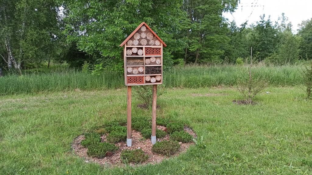 Domki dla owadów – fot. Przyroda dla Sosnowca