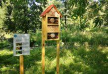 Domki dla owadów – fot. MZUK Sosnowiec