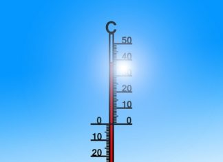 Termometr - fot. Pixabay
